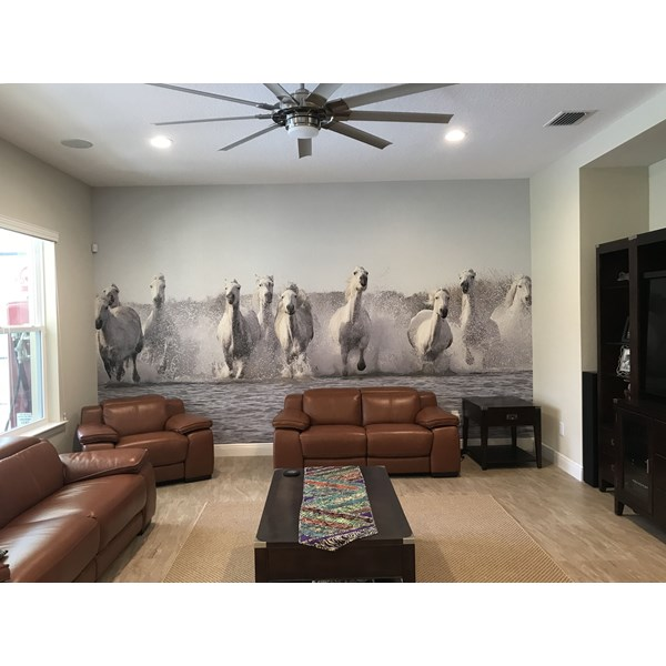 Decals and Custom Appliques iI360 Tampa Ybor City HiRes Horse Wall Mural